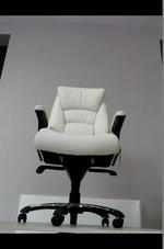 слонова кост директорски офис столове  за фирми